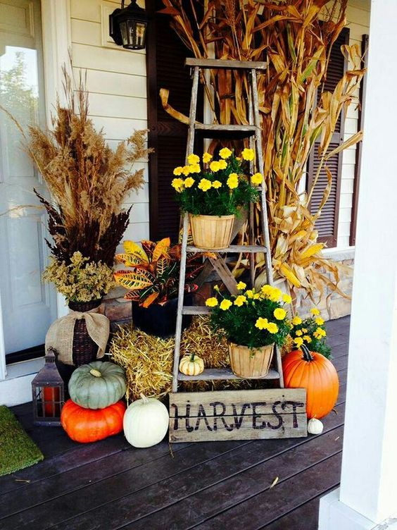 Decorated Harvest Ladder